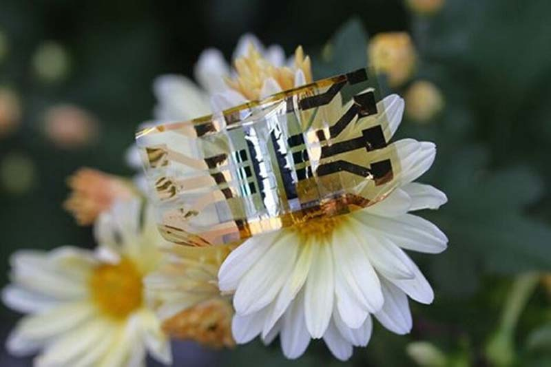 new-flexible-solar-cell-may-help-power-wearables-tomorrow-1